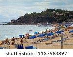 beautiful city beach on the... | Shutterstock . vector #1137983897