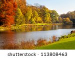 autumn landscape. park in... | Shutterstock . vector #113808463