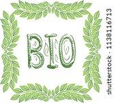 bio. vector illustration   Shutterstock .eps vector #1138116713