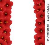 red hibiscus flower   rose of... | Shutterstock .eps vector #1138293383