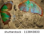 butterfly and flowers on... | Shutterstock . vector #113843833