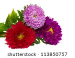 Bouquet Of  Three Aster Flower...