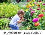cute little funny baby boy... | Shutterstock . vector #1138665833