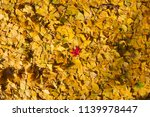 an abstract nature art of a... | Shutterstock . vector #1139978447