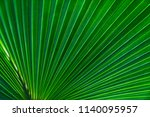green leaves texture tropical... | Shutterstock . vector #1140095957