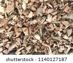 pile of dried coconut husk peel ... | Shutterstock . vector #1140127187