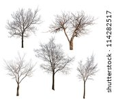 Set Of Trees Without Leaves...