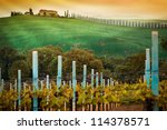 Vineyard landscape in Tuscany, Italy - stock photo