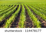 Agricultural Field On Which...