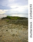 Beachscape At Low Tide With...