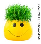 Green grass in a fun pot on a white background. - stock photo