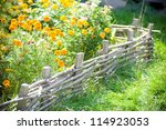 Flowerbed To Garden With Flowers