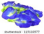 group of clitoria ternatea or... | Shutterstock . vector #115110577