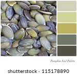 A pumpkin seed background colour palette with swatches of complimentary colours - stock photo