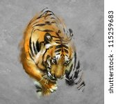painting a tiger on the wall   Shutterstock . vector #115259683