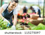 beautiful female nursery worker working in greenhouse - stock photo