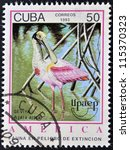 Small photo of CUBA - CIRCA 1993: A stamp printed in Cuba dedicated to endangered wildlife, shows Seviya, ajaia ajaja, circa 1993
