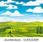 Green summer landscape with meadows and trees on a cloudy sky - stock vector