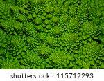 A Green Cabbage Closeup