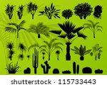 Exotic Plant  Bush  Palm Tree...