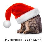 Cat In Santa Claus Red Hat...