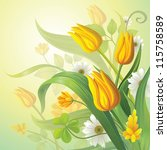 fresh spring flowers. yellow tulips and daisy. vector background - stock vector