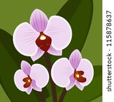 Vector Flower. Orchid In Lilac...