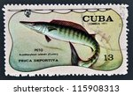 Small photo of CUBA - CIRCA 1971: A stamp printed in Cuba dedicated to sport fishing, shows wahoo, Acanthocybium solandri, circa 1971
