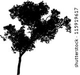 vector silhouette of a tree | Shutterstock .eps vector #115919617