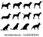 dogs | Shutterstock .eps vector #116028343