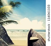 vintage palm background | Shutterstock . vector #116061103