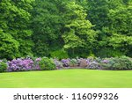 Colonial parc in Brussels, Belgium with blossoming rhododendrons - stock photo