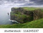 lush grass at cliffs of moher... | Shutterstock . vector #116245237
