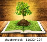 Tree growing from a book on wooden table - stock photo