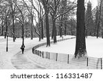 """Small photo of """"Winter Path Central Park"""" A black and white view of Central Park after afresh snowfall."""