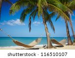 palms with hammock on the sea... | Shutterstock . vector #116510107