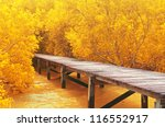 wood bridge in yellow mangrove... | Shutterstock . vector #116552917