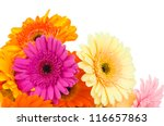 Mix Gerber Flowers Isolated On...