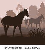 Horses In Field Vector...