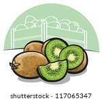 kiwi fruit | Shutterstock .eps vector #117065347