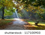 Path In The Autumn Park....