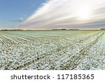 First snow on the wheat field. - stock photo