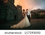 wedding beautiful couple in the evening in a castle - stock photo