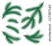 set of fir branch on white... | Shutterstock .eps vector #117387163