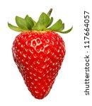 single fresh red strawberry... | Shutterstock . vector #117664057