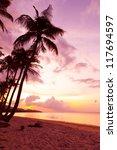 tropical beach | Shutterstock . vector #117694597