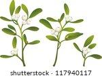 sprigs of mistletoe | Shutterstock .eps vector #117940117
