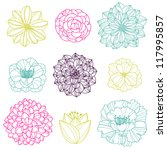 vector collection of hand drawn ... | Shutterstock .eps vector #117995857