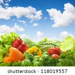 healthy food landscape against... | Shutterstock . vector #118019557