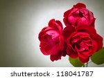 Three Garden Red Roses On Gree...